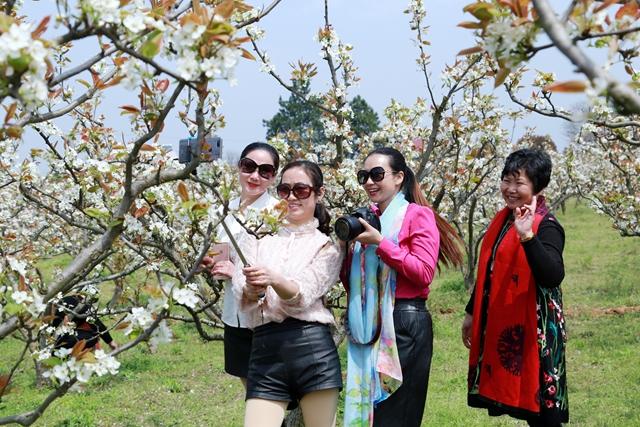 图游永州:带你遇见最美的春天!