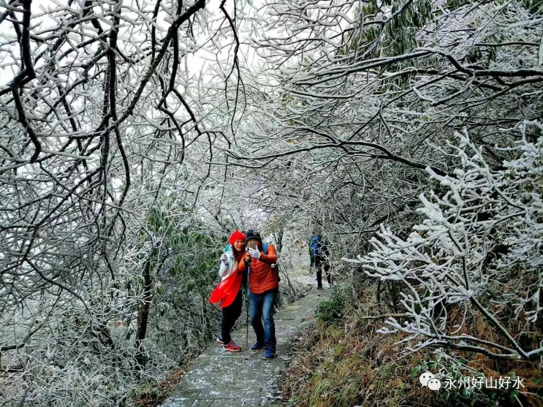 驴友永州:邂逅阳明山第一场冬雪