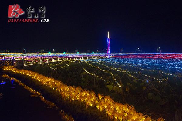 道县:首届爱莲小镇灯光艺术节惊艳亮相