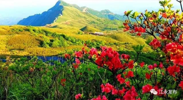 这个季节,江永燕子山美得不可描述