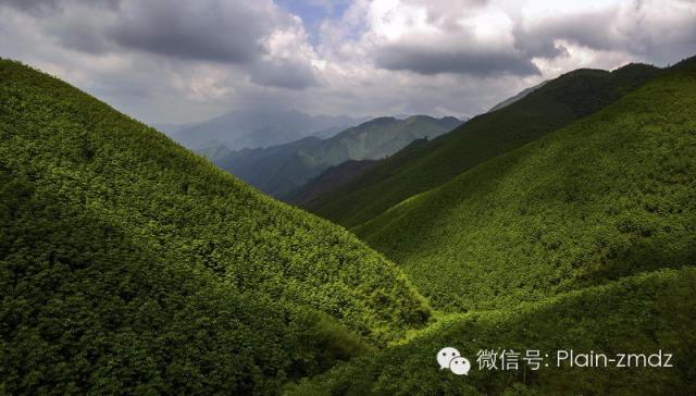 驴友永州:洪塘营瑶族乡旅行记