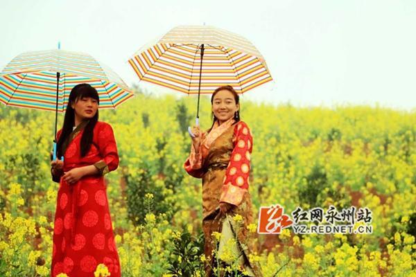 油菜花开 藏族少女走进永州农科园