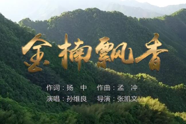 《金楠飘香》金洞首届森林音乐节主题MV