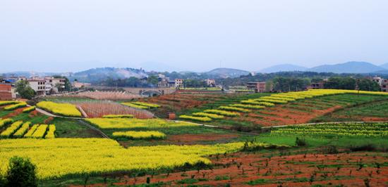 图游永州:美丽富饶的小江村
