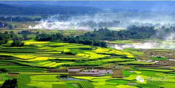 图游永州:梦里水乡菱角塘