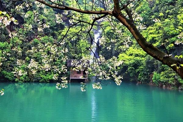 图游永州:魅力金洞的邀请