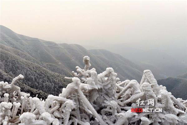 江永铜山岭雪景妖娆 如梦如画