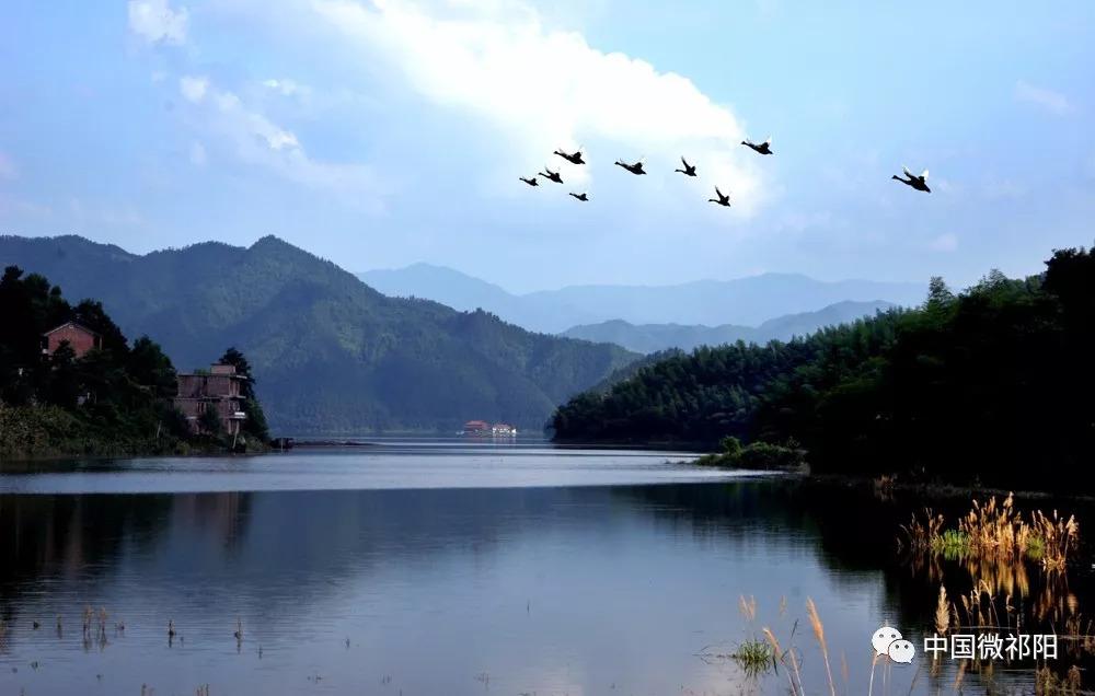 祁阳大江省级森林公园通过评审